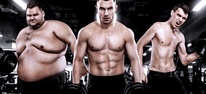 Какие бывают типы телосложения