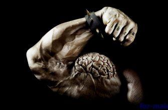 Что такое мышечная память