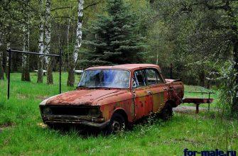ржавая машина в лесу