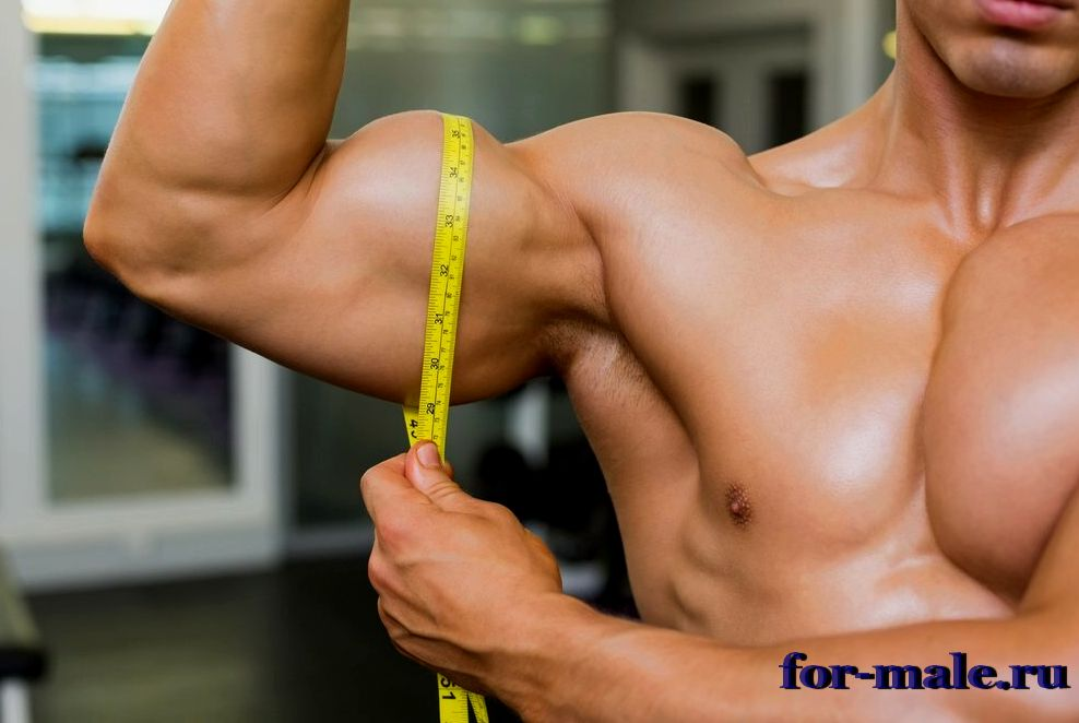Как измерить обхват плеча